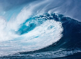 Physical Science: Wave